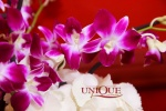 Aranjamente florale din hortensie pene si orhidee